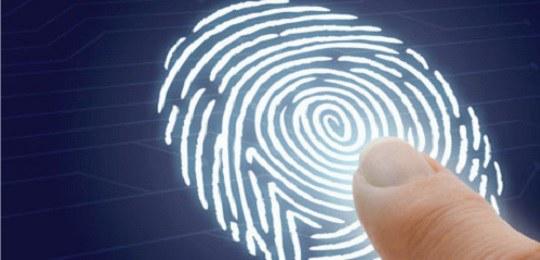 TRE-PR reinicia cadastramento biométrico